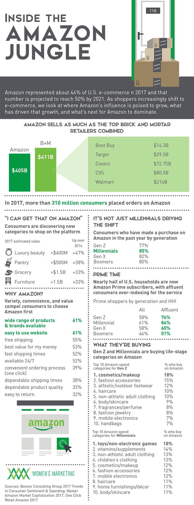 AmazonJungle_Infographic.jpg